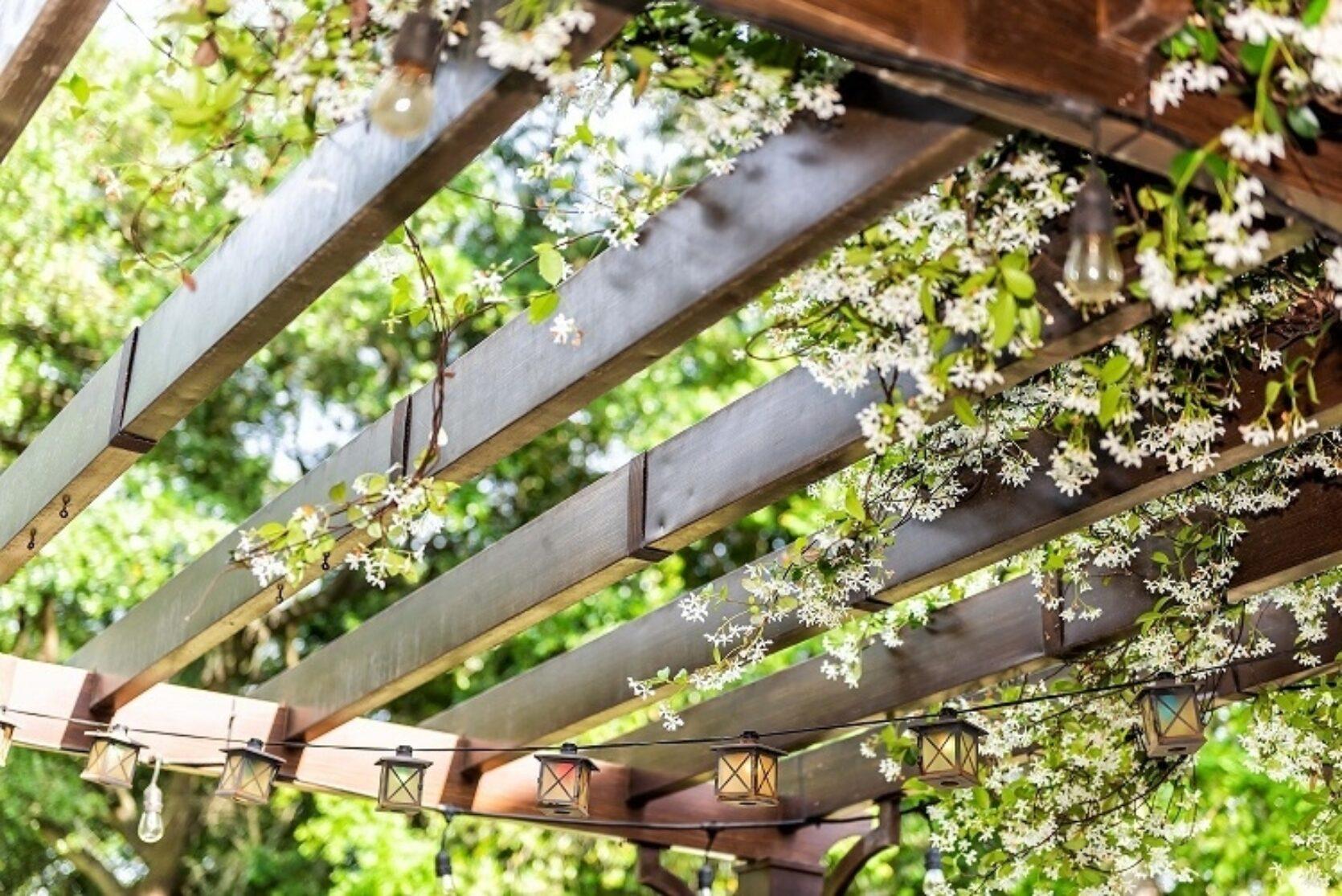 Pergola med blomster og klatreplanter