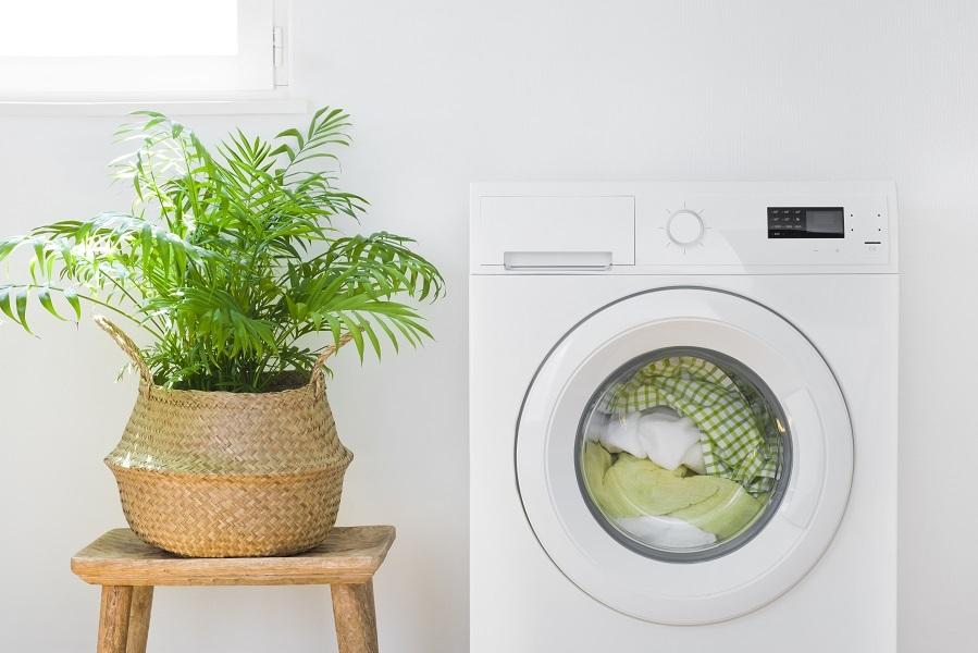 Hvit vaskemaskin med grønnplante på en krakk ved siden av.