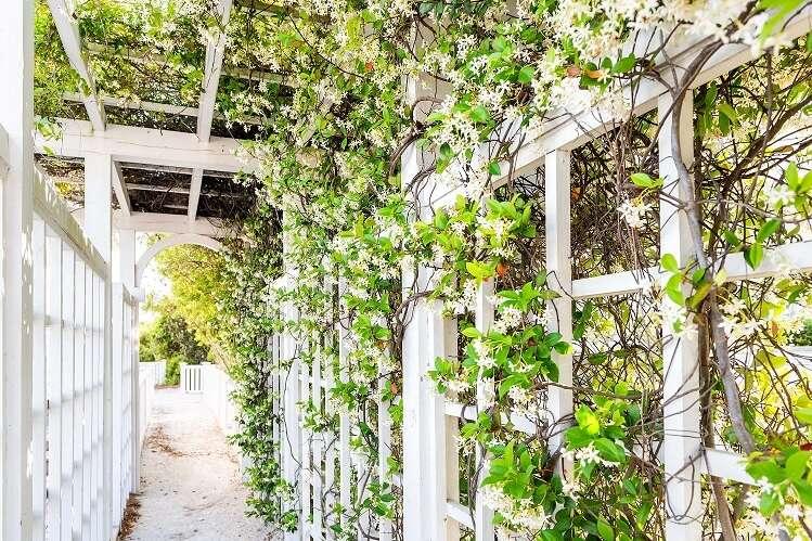 Årets store trend: Forleng sesongen utendørs med hagestue, pergola eller drivhus